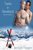 gay bear fiction