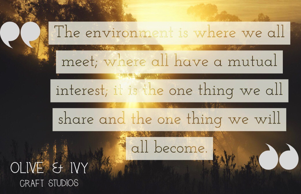Our Environment is so important for the future