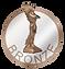 logo popai de bronze.png