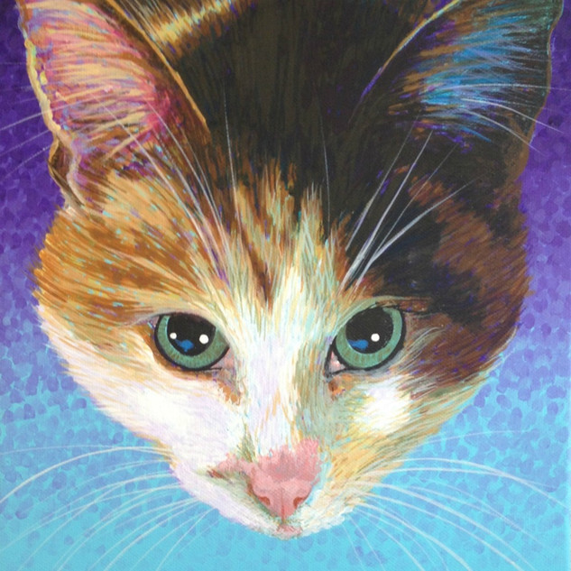 Calico on Lilac