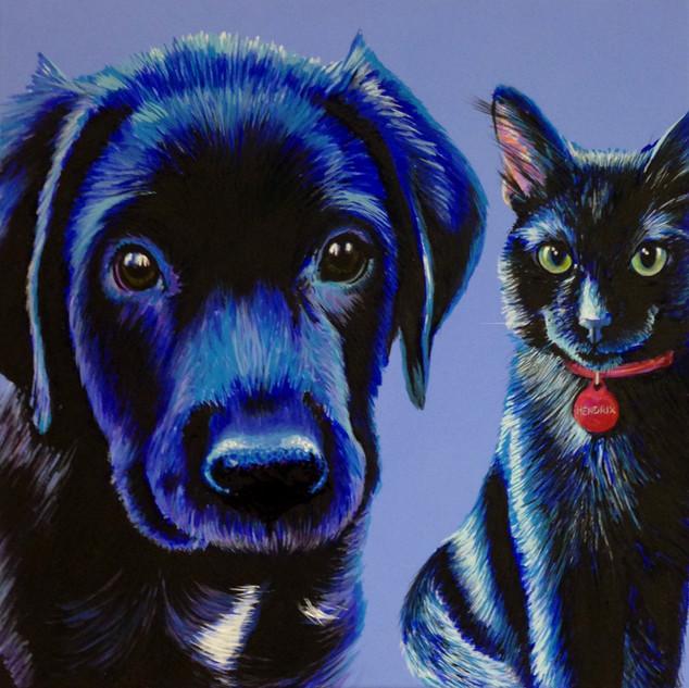 Black Lab & Cat on Blue