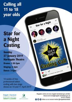 SFAN casting flyer.jpg