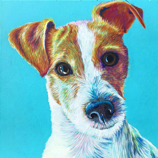 JRT on Turquoise