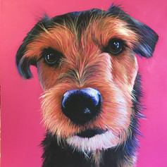 JRT on Pink