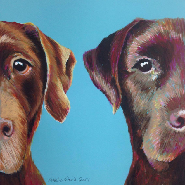 Chocolate Labradors on Turquoise