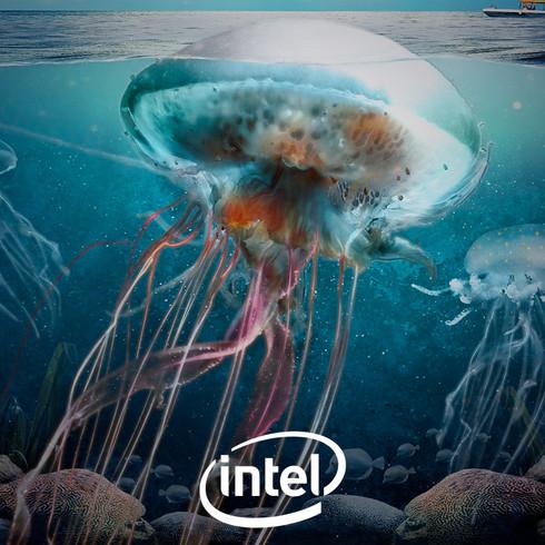 Intel | Wallpaper