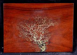 Padauk with Gold Leaf Inlay