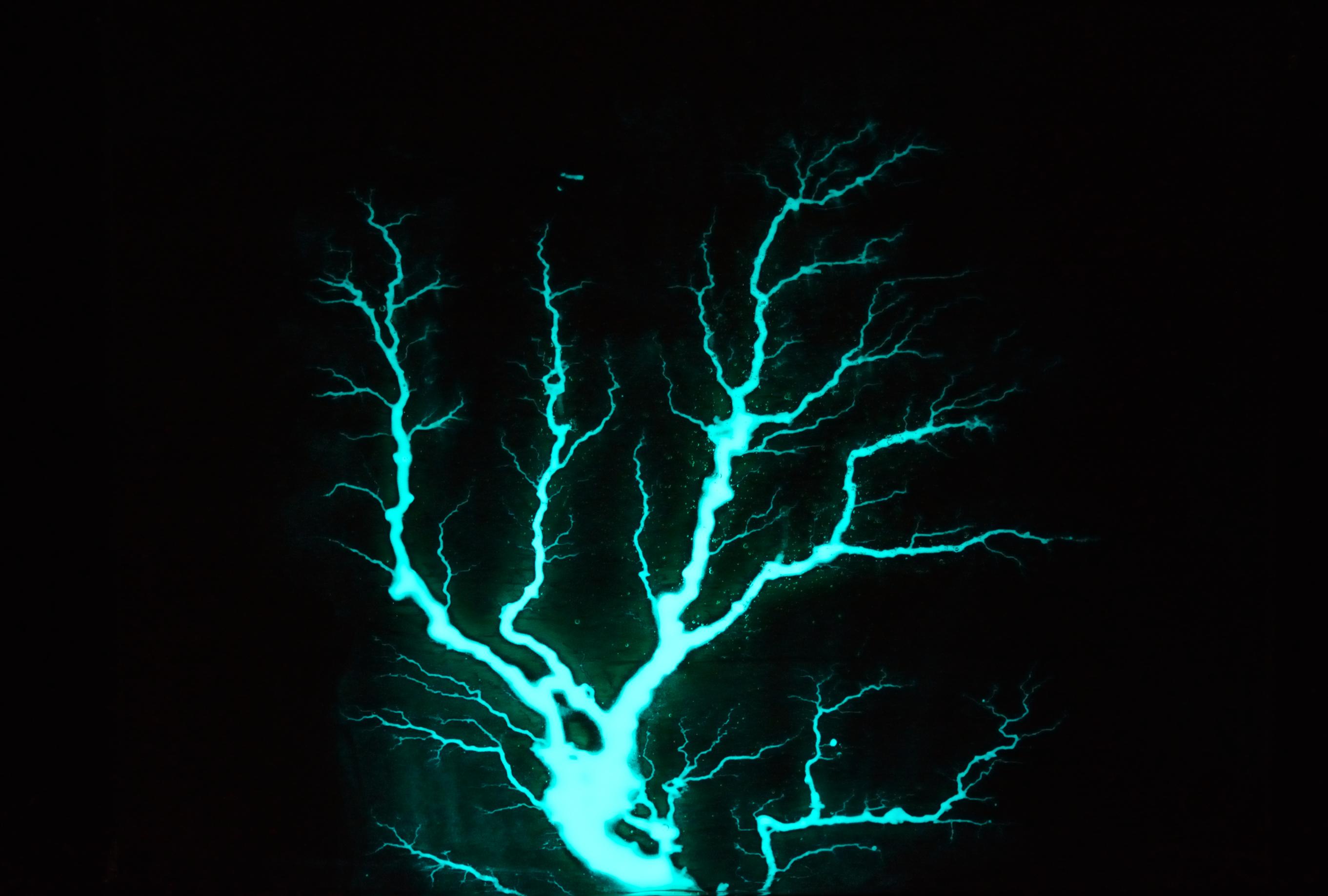 Ambrosia Maple Glow in the Dark