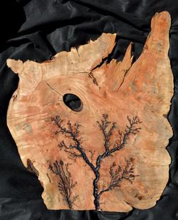 Ambrosia Maple Disc Slab