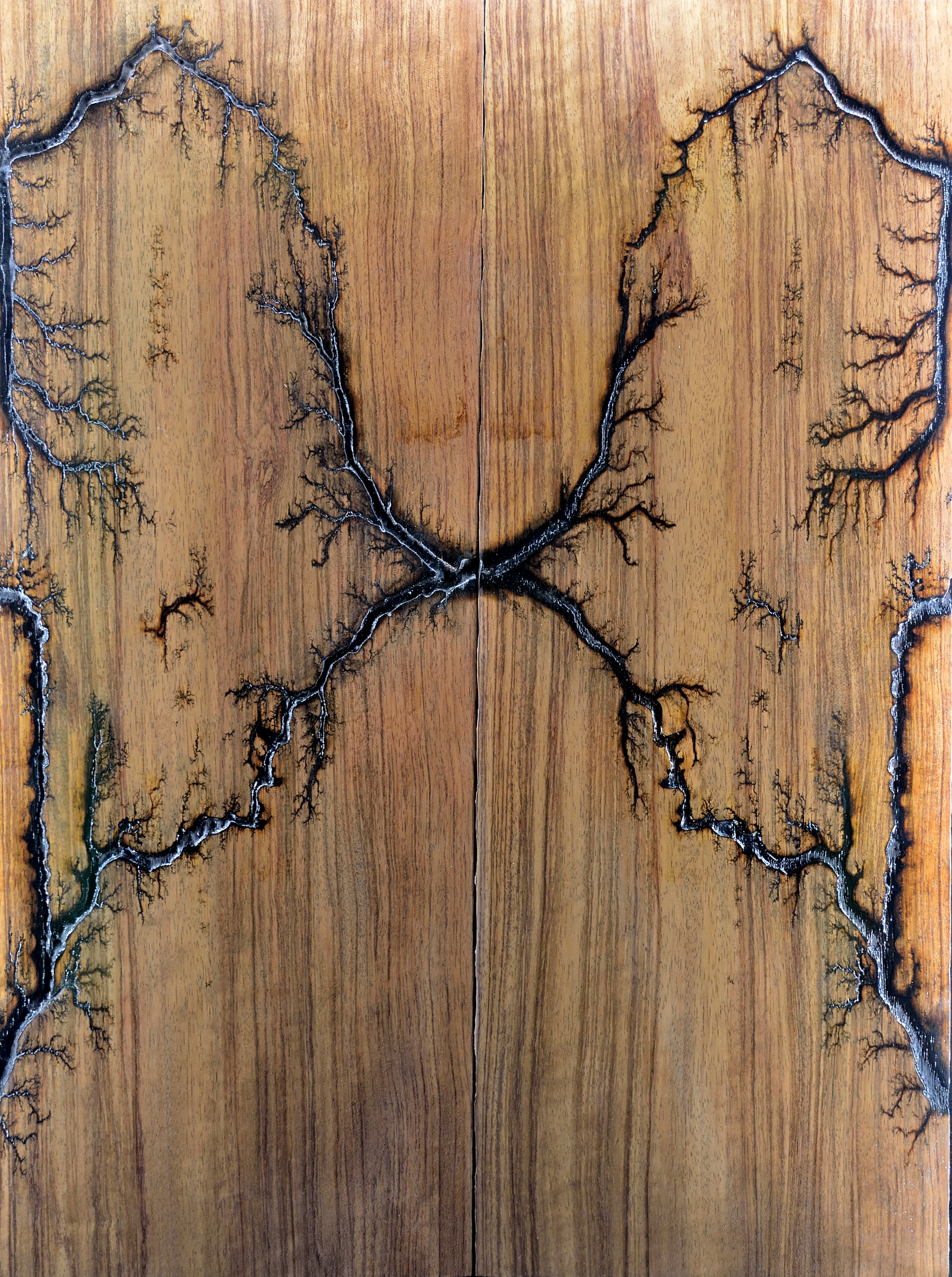 Bubinga Mirror Image Wings