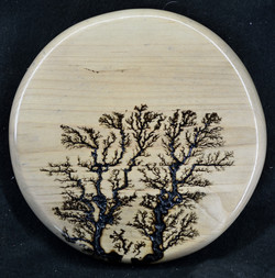 Maple Disc