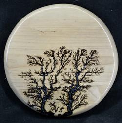 Maple Disc