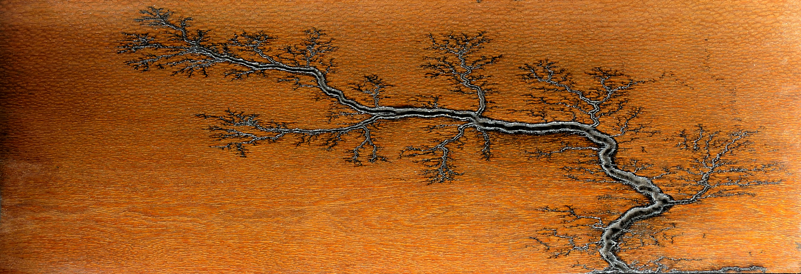 Leopardwood Bonsai Pattern