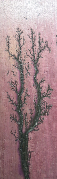 Purpleheart Twin Branches