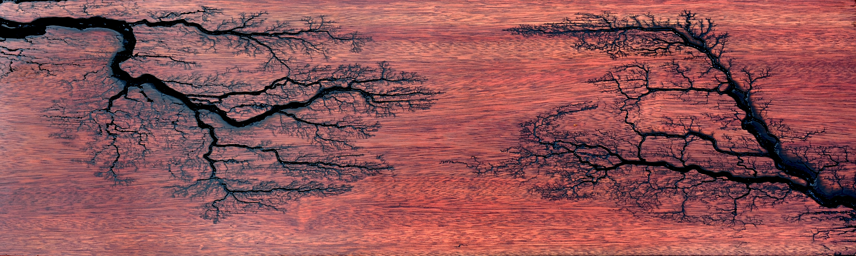 Bloodwood End Table Top