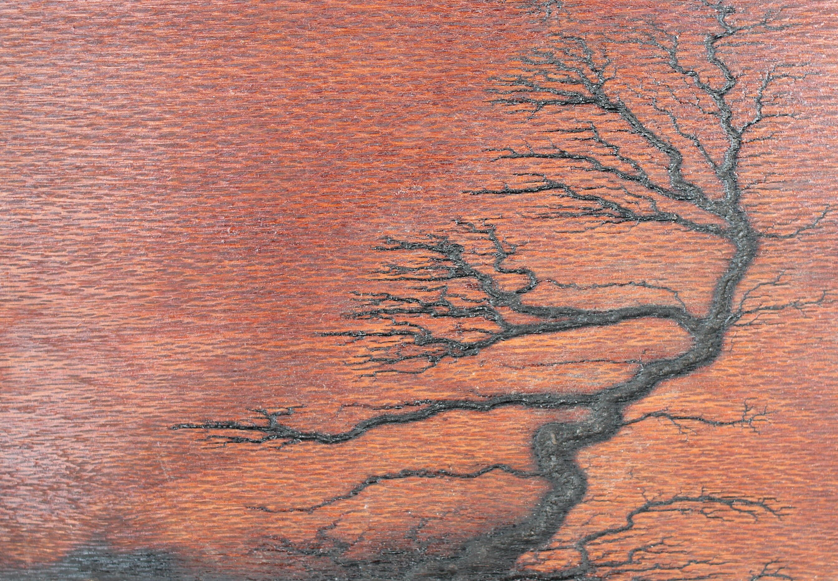 Bonsai Pattern on Leopardwood