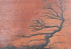 Bonsai Pattern on Leopardwood