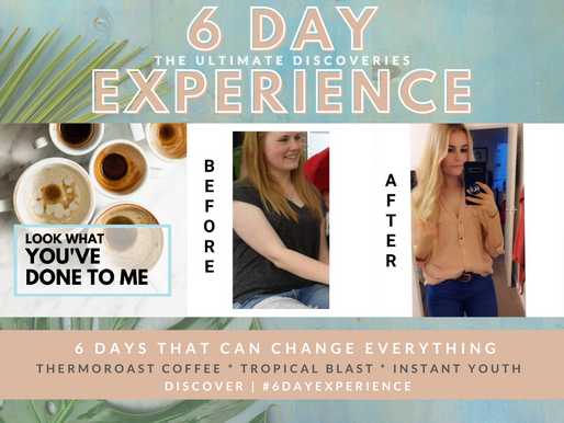 The 6 Day Experience at Coffee Society Magazine