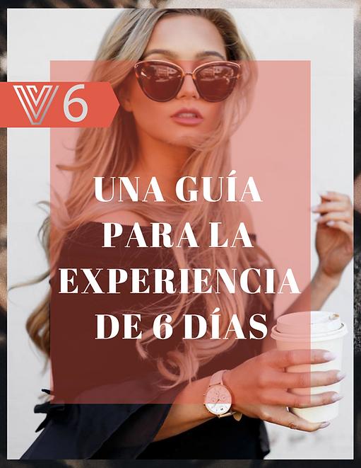 V 6 Spanish Cover.png