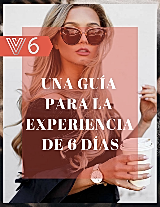 V 6 Spanish Cover.png