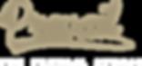 Prevail Studio Swoosh Logo.png