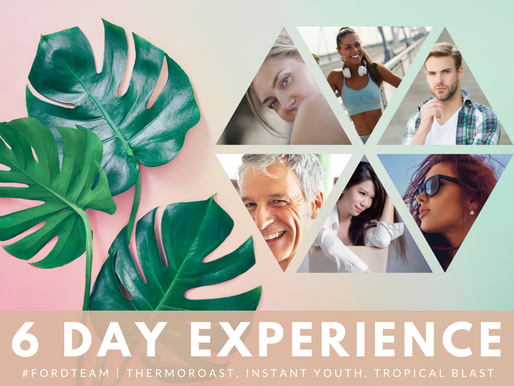 The 6 Day Experience Training With Blue Diamond, Karen Ford