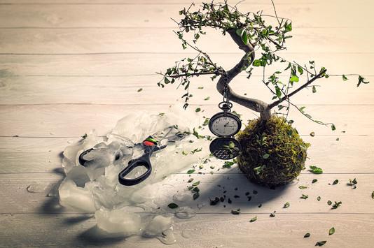 _Time_Stood_Still-1446-Edit.jpg