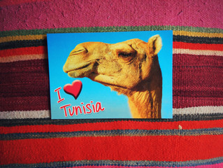 Australian Women in Arts & Business Visit to Tunisia