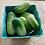 Thumbnail: Pickling Cucumbers