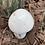 Thumbnail: Mushroom Merlinite XL