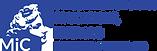 DGERIC_logo_esteso_BLU.png