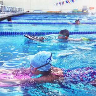 Dolphin Swim Club