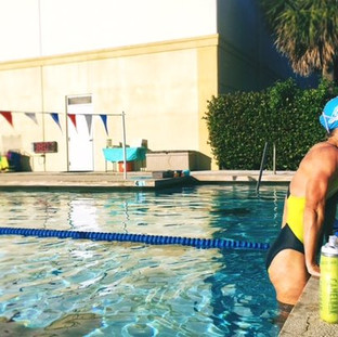 Adult Dolphin Swim Club
