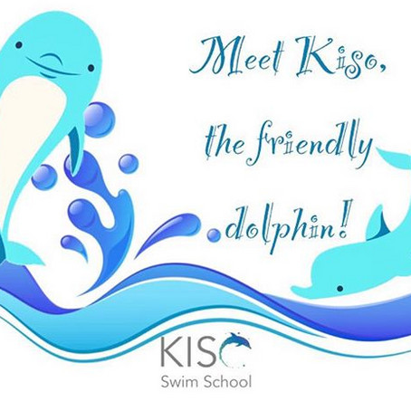 Meet Kiso, the Friendly Dolphin!