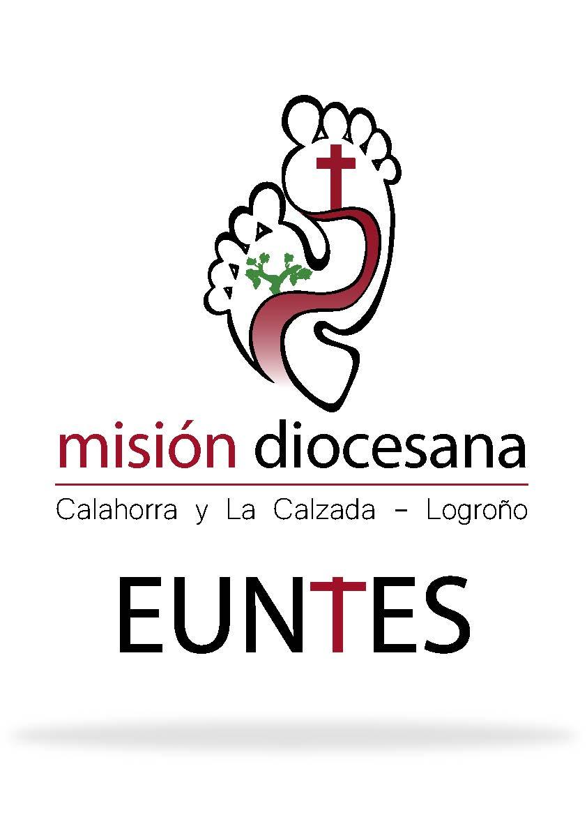 Resultado de imagen de euntes misión diocesana