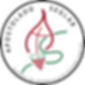 Logo apostoglado.png