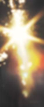 TreeFlare_Resize_Respeed (0-06-28-22)_ed