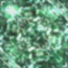 Green Leaves 2.jpg