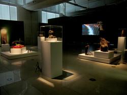 Millenium Galleries installation