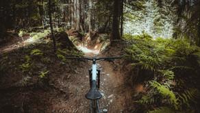 7 Idées pour s'occuper pendant le confinement - Bike Edition