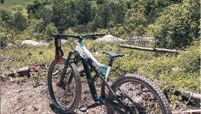 Bike Check 2020
