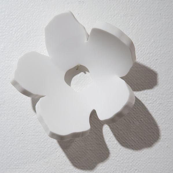 花・壁・HIMACS・壁.jpg