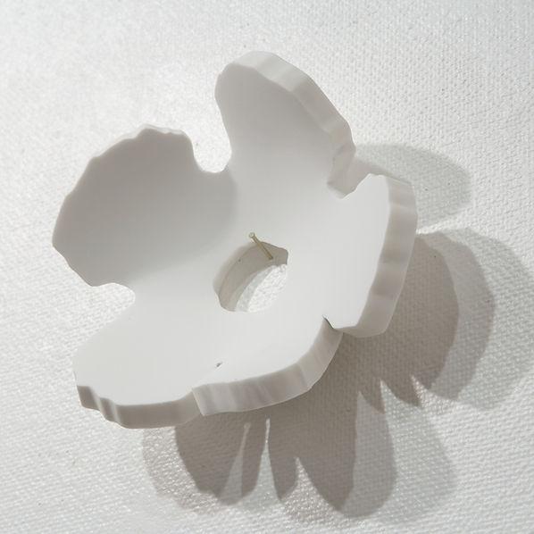 花びら・HIMACS・壁.jpg