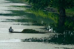 River Reflections, Kashmir.