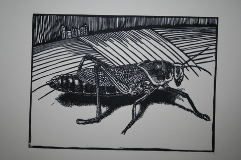 Its all abour Perspective:Locust