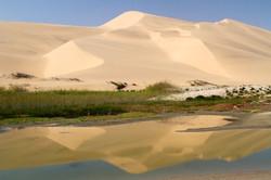 Dune reflection 2