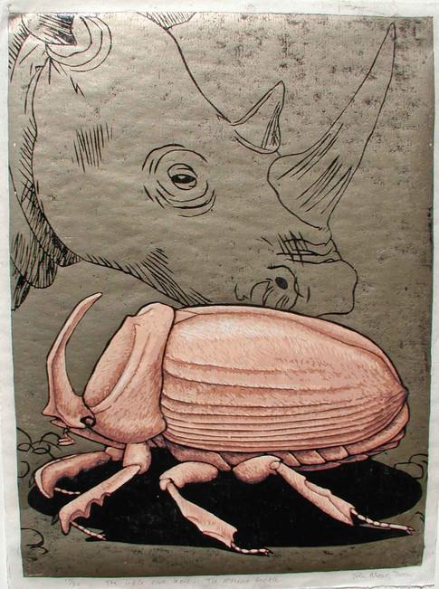 The Little Five Series:Rhino Beetle