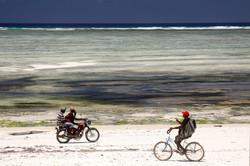 Zanzibar beach scene.