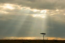 Sun Ray Storm.