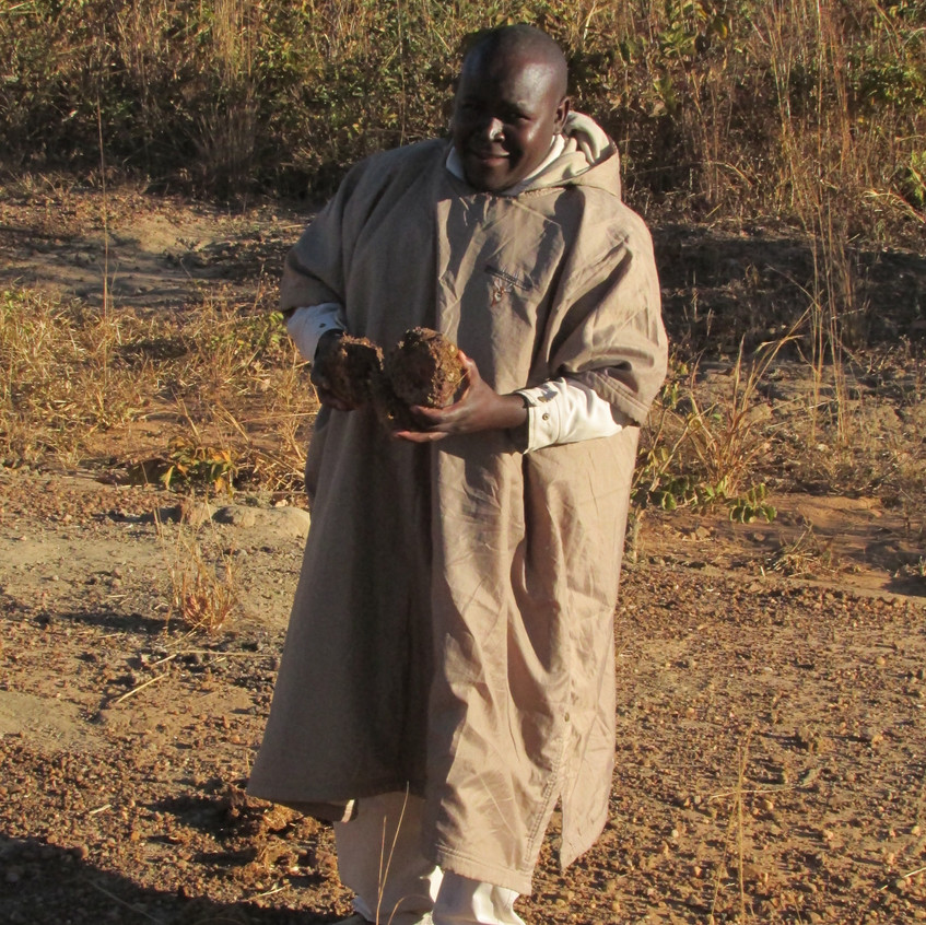 Our guide collecting dry dung